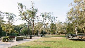 Reptile Park Scenery